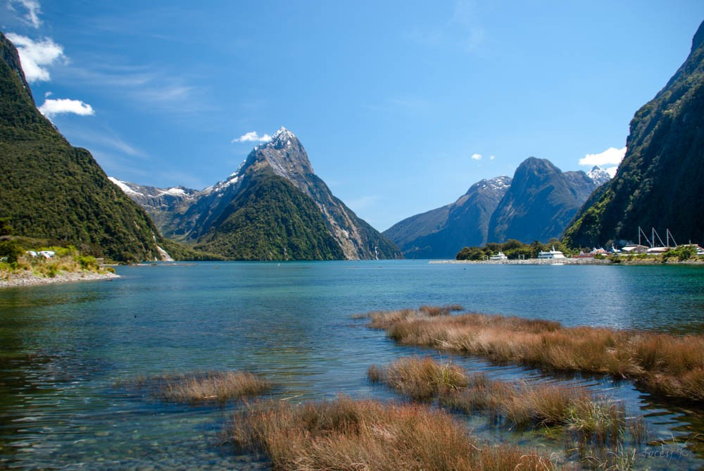 Immigrating to New Zealand