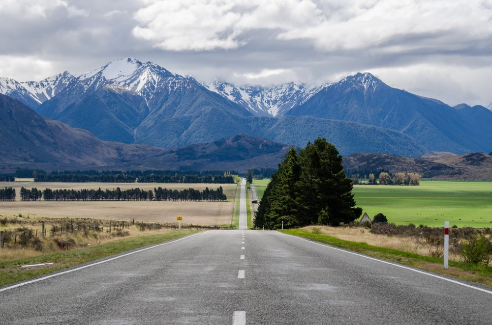 Relocating to New Zealand