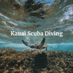 Kauai Scuba Diving